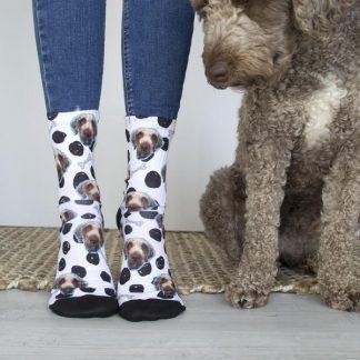 Socks For Dog Lovers