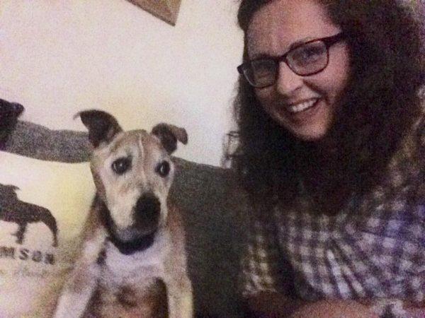 pet sitter in whiteley